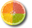 TSENET-circle-image-icon4-color-fruit