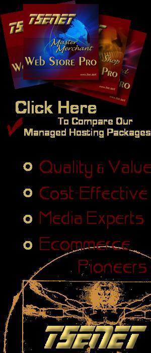 tse.net Managed WordPress Hosting Packages
